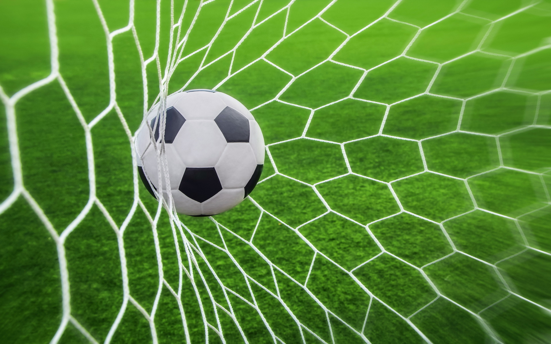 Soccer Net Wallpaper