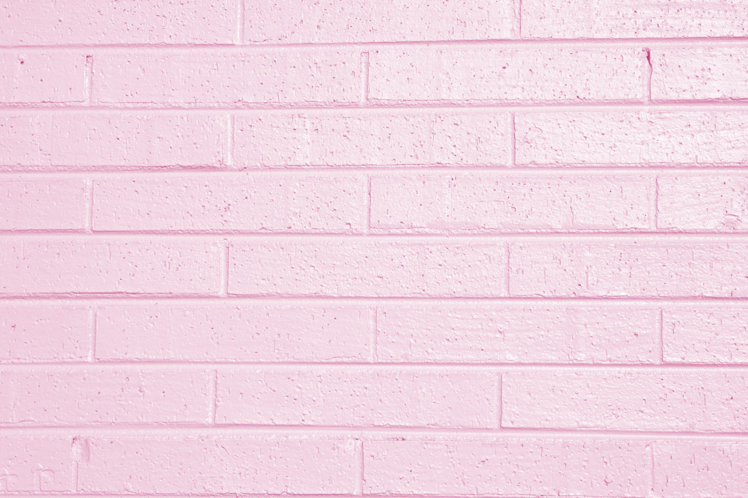 Solid Light Pink Wallpaper