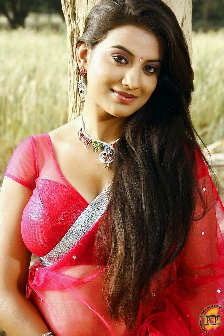 South indian film stars photo gallery