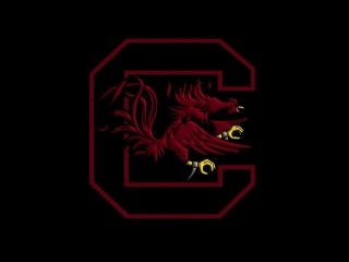 South Carolina Gamecock Wallpapers Free