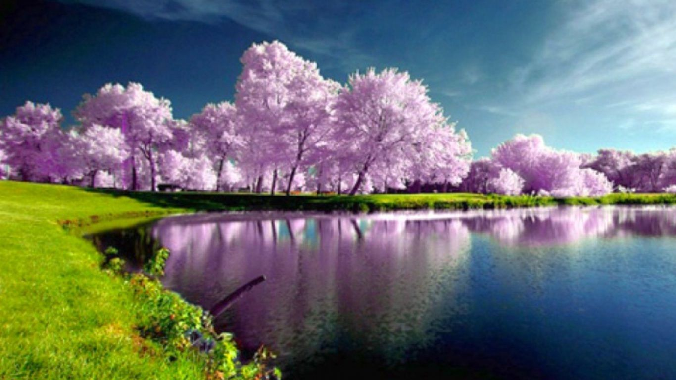 Spring Images Wallpaper