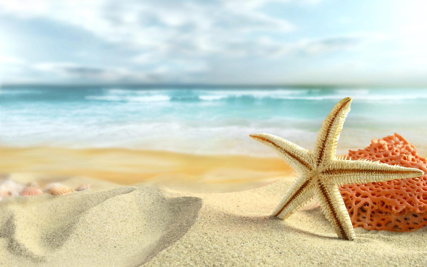 Summer Pictures Wallpaper