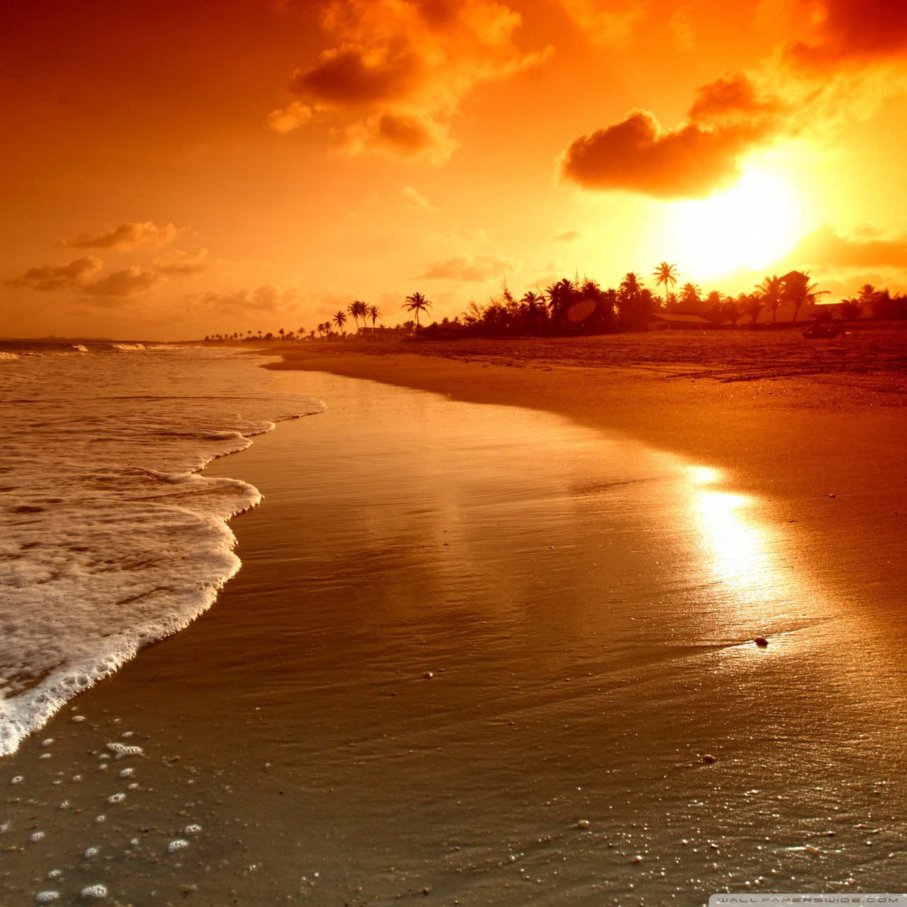 Sun Rise Wallpaper Android