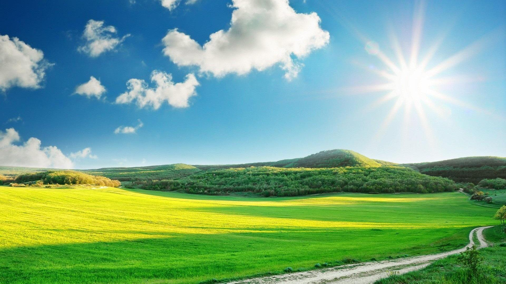 Sunny Day Wallpaper