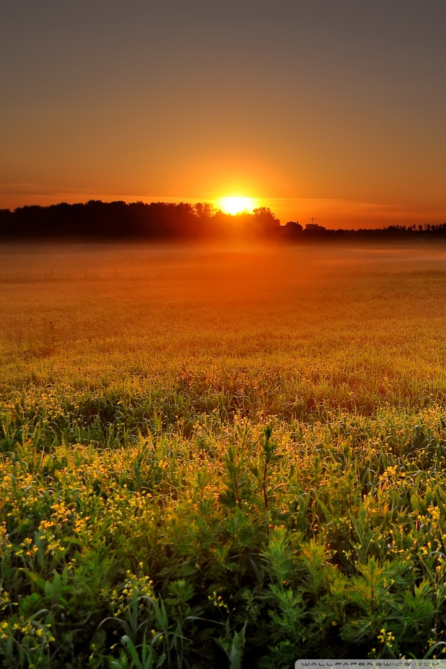 download sunrise wallpaper for mobile gallery