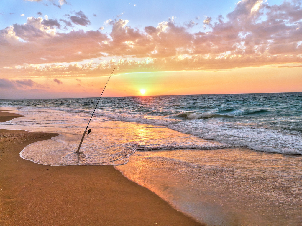 Surf Fishing Wallpaper