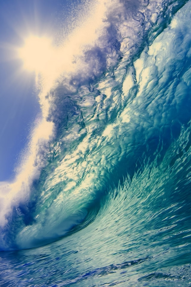 Surfing Iphone Wallpaper