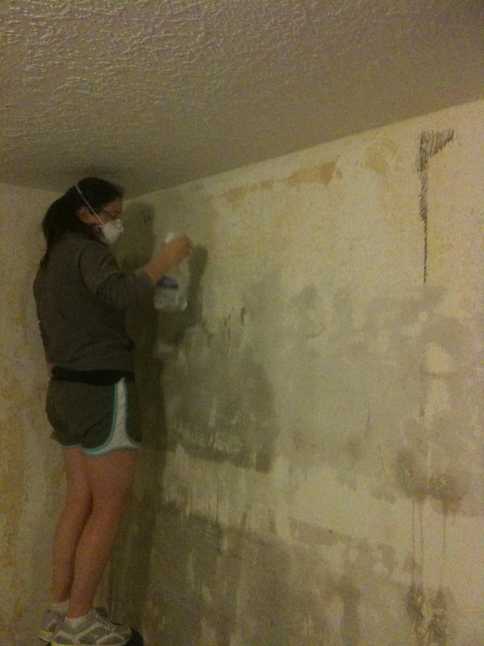 Taking Wallpaper Down