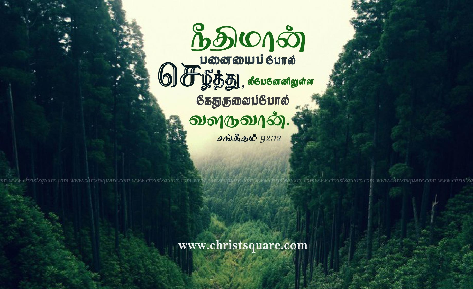 Tamil Mobile Wallpapers