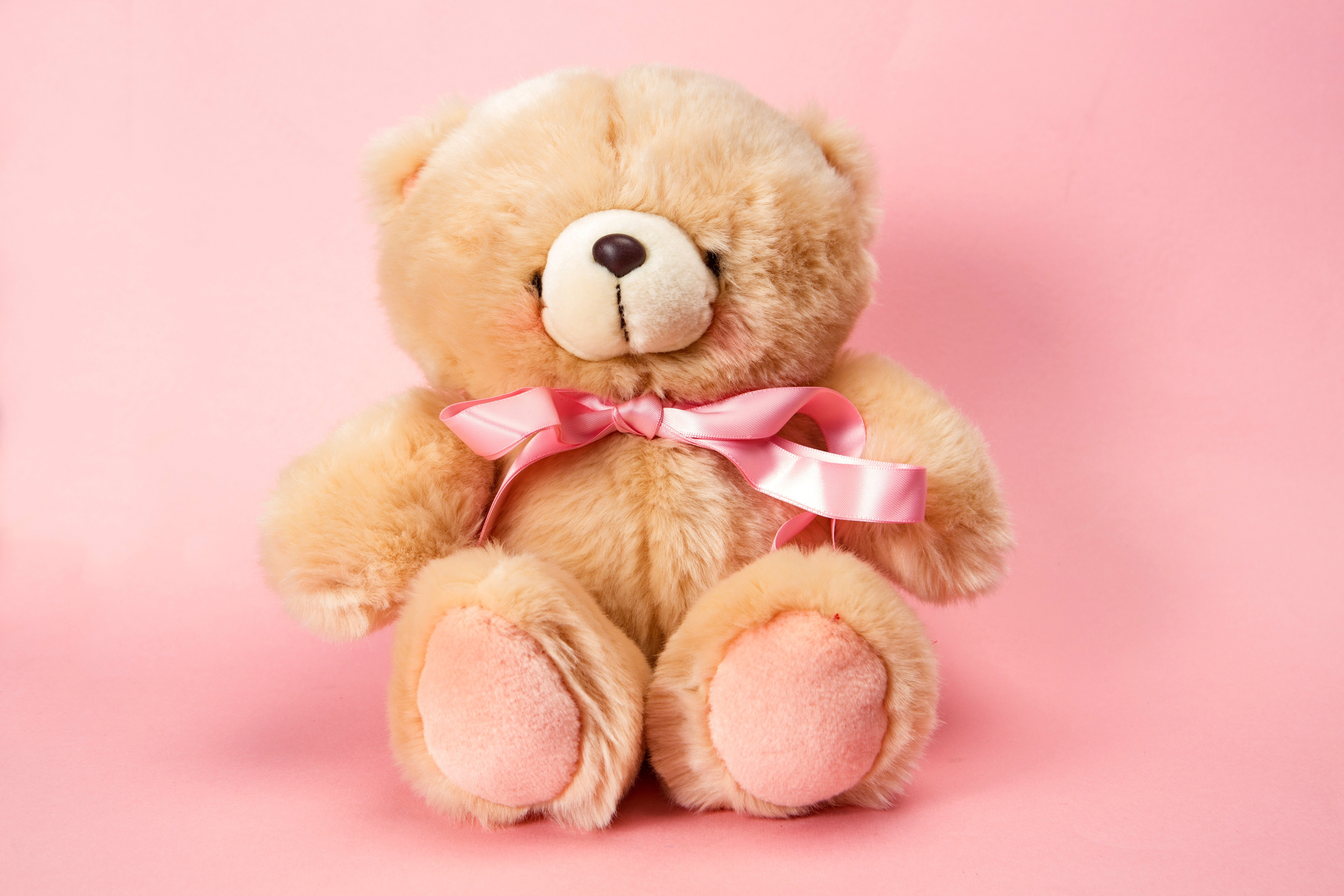 Bunny Cute Pink Teddy Bear Hd Wallpapers For Desktop: Download Teddy Bear Pink Wallpaper Gallery