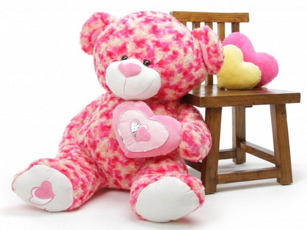 Teddy Wallpaper Download Free
