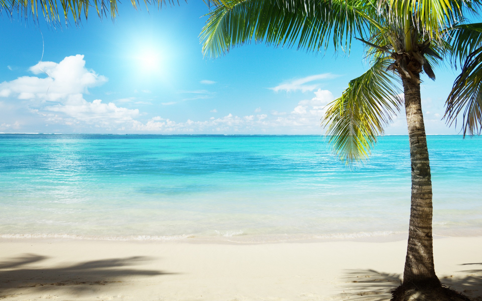 The Beach Wallpapers