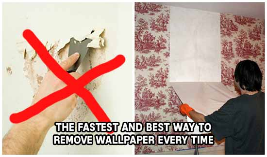 download the best way to remove wallpaper gallery