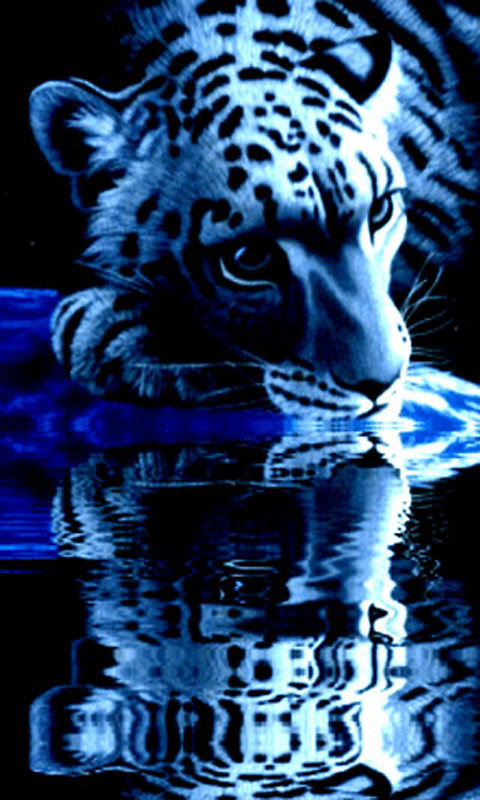Download Tiger Live Wallpaper Free Gallery