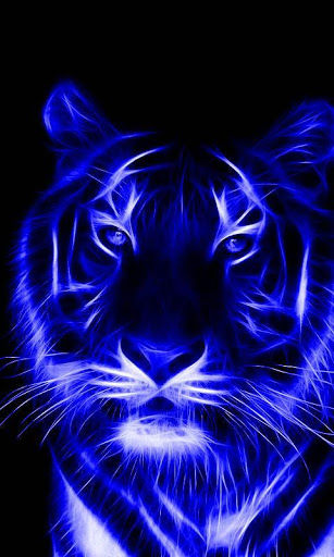 Download Tiger Wallpap...