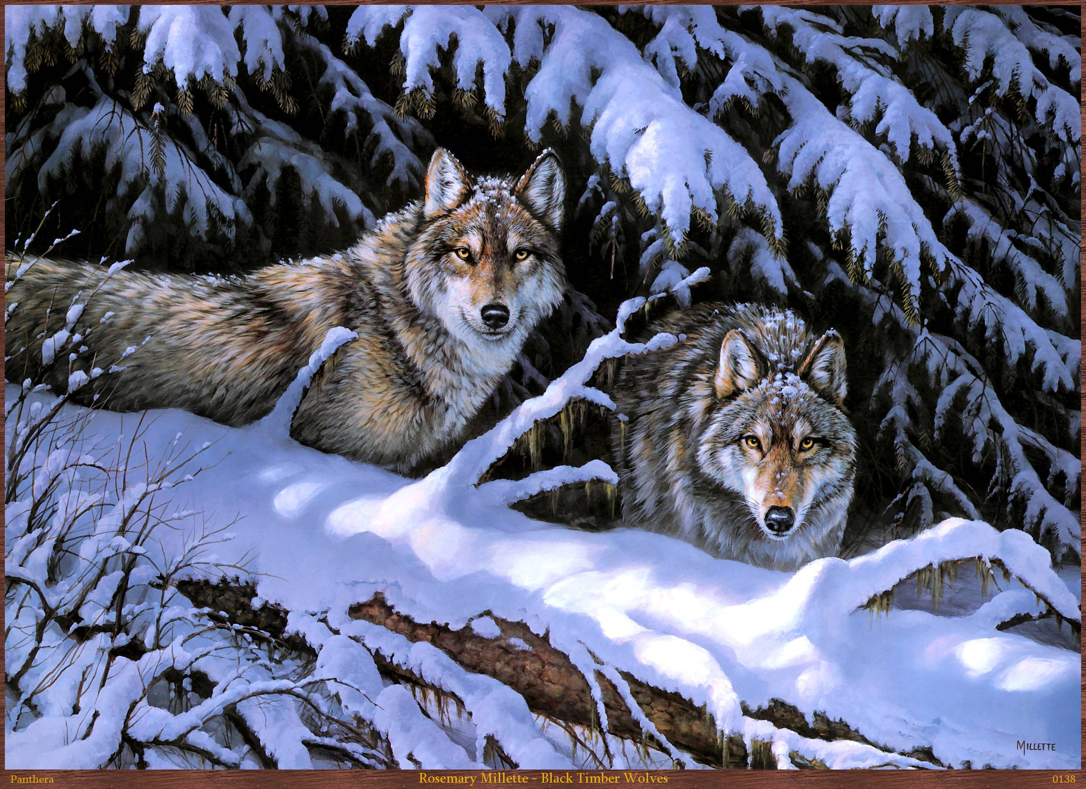 Download Timberwolf Wallpaper Gallery