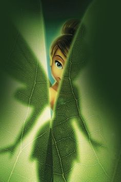 Tinkerbell Wallpaper Iphone