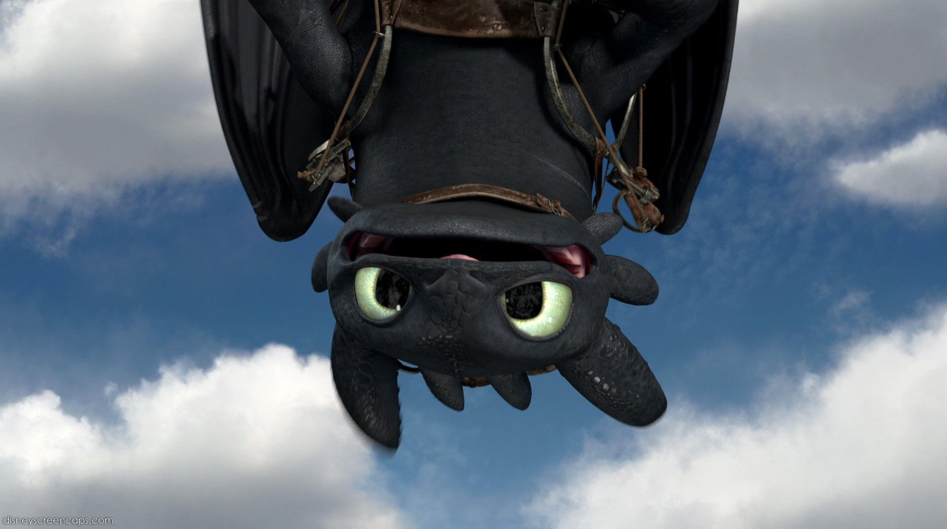 Toothless Night Fury Wallpaper