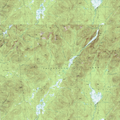 Topo Map Wallpaper