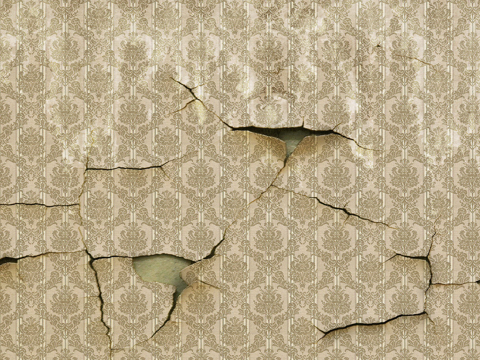 Torn Wallpaper