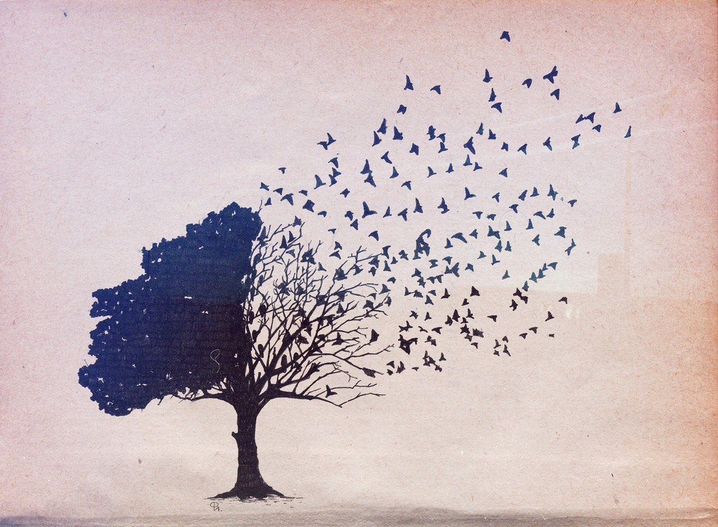 Tree And Bird Wallpaper