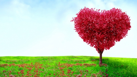 Tree Love Wallpaper