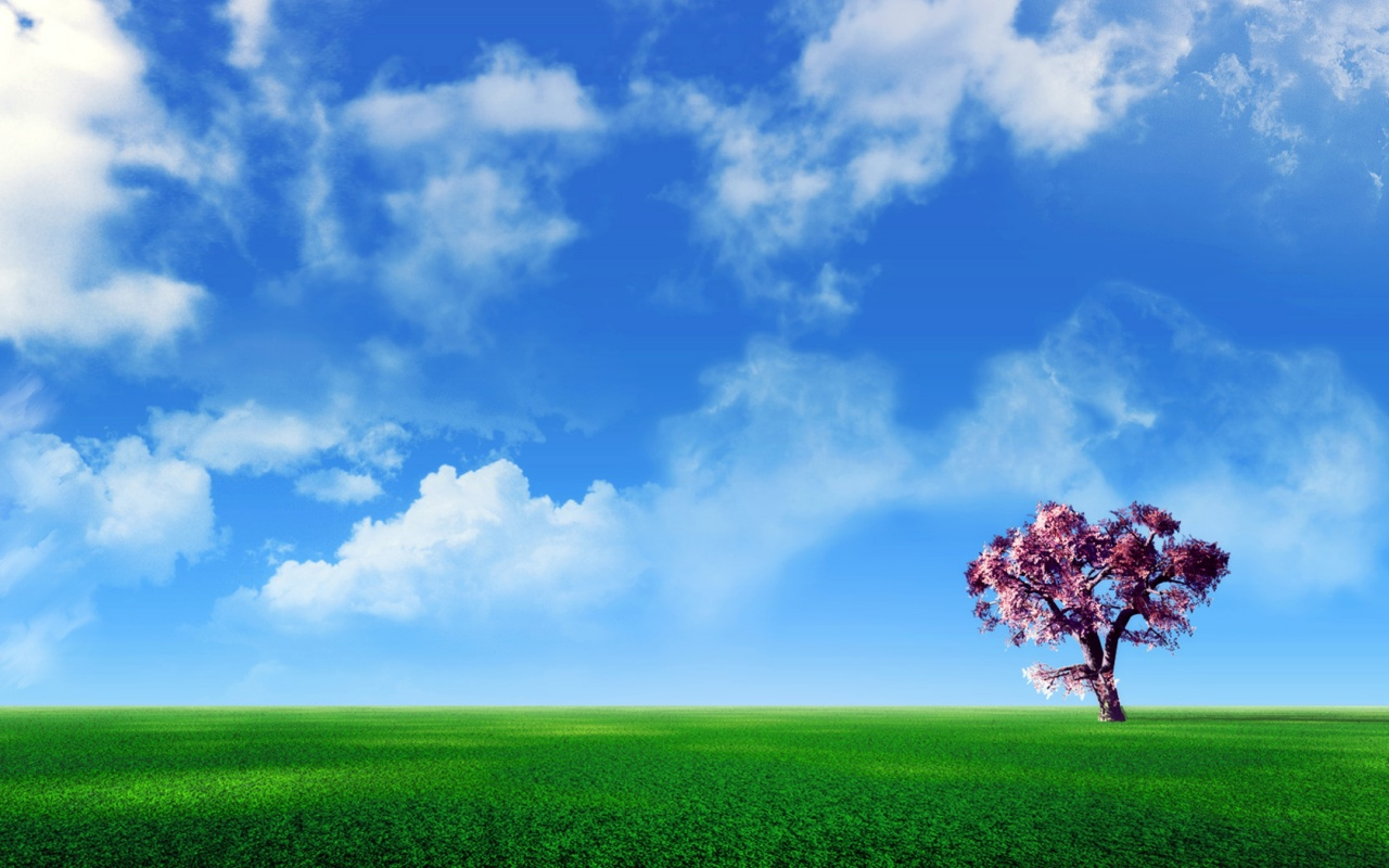 Tree Scenery Wallpaper
