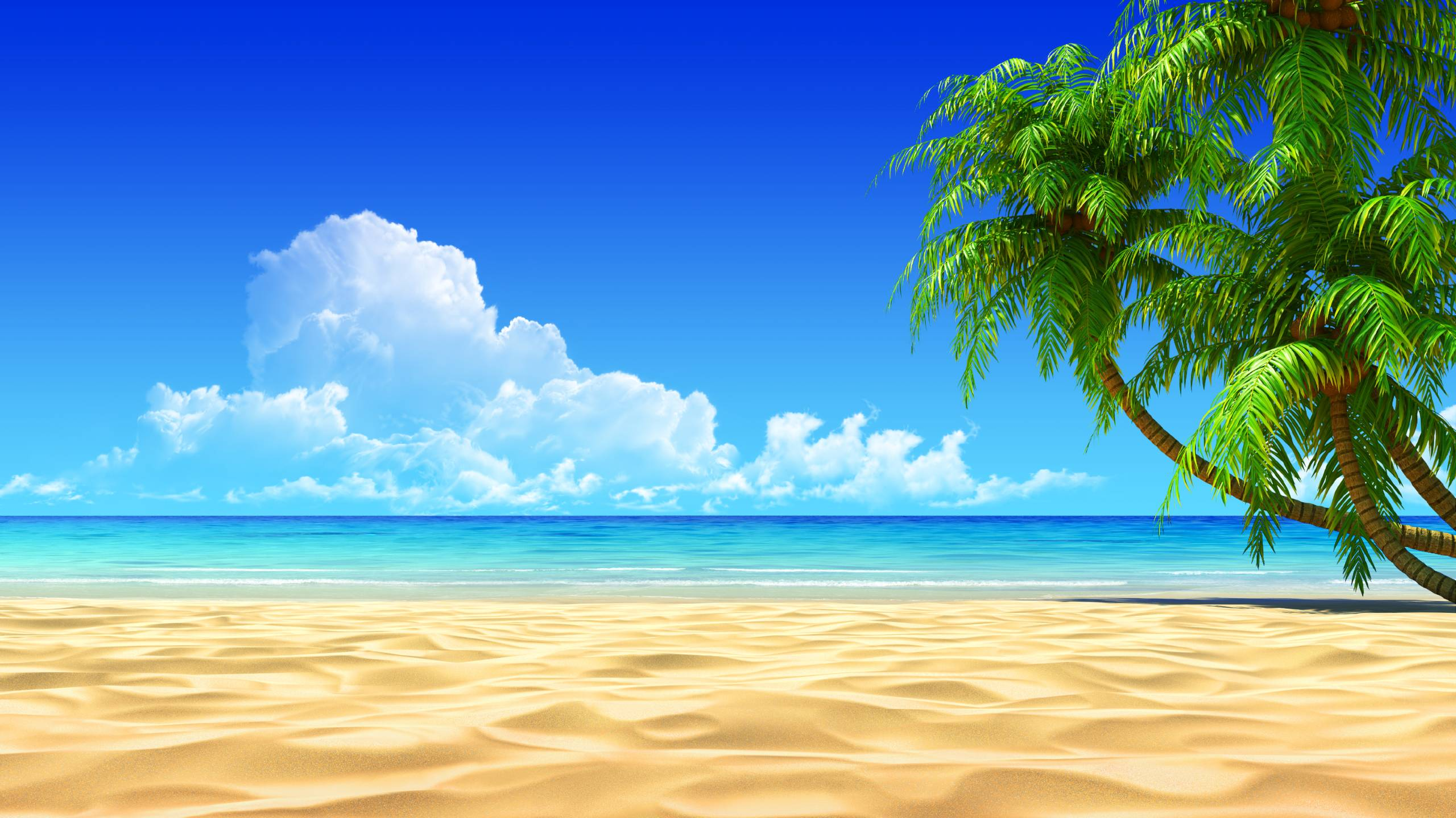 Tropic Wallpaper
