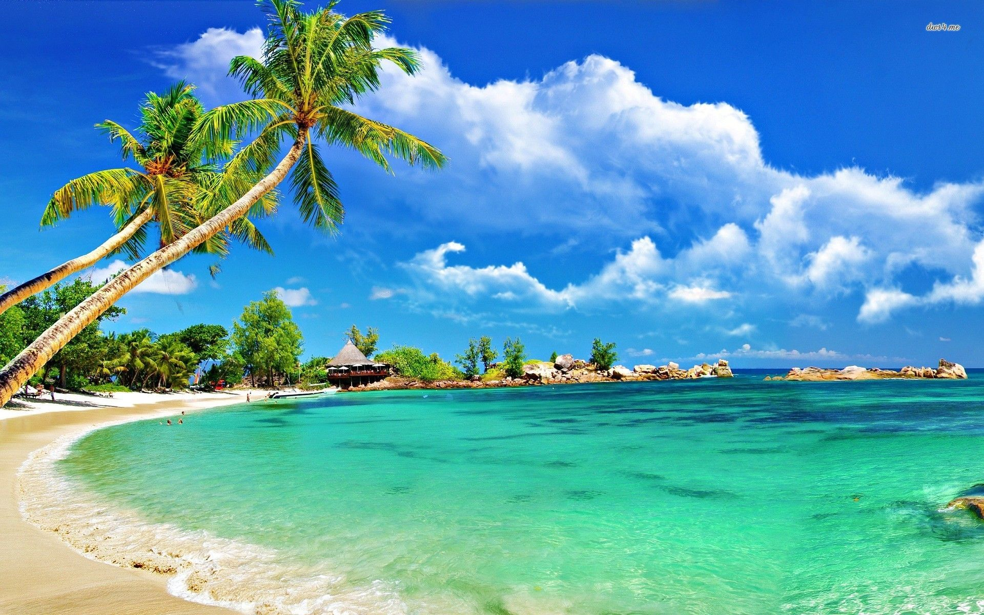 Tropical Beaches Wallpaper