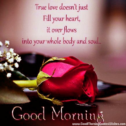 Download True Love Thoughts Wallpapers Gallery