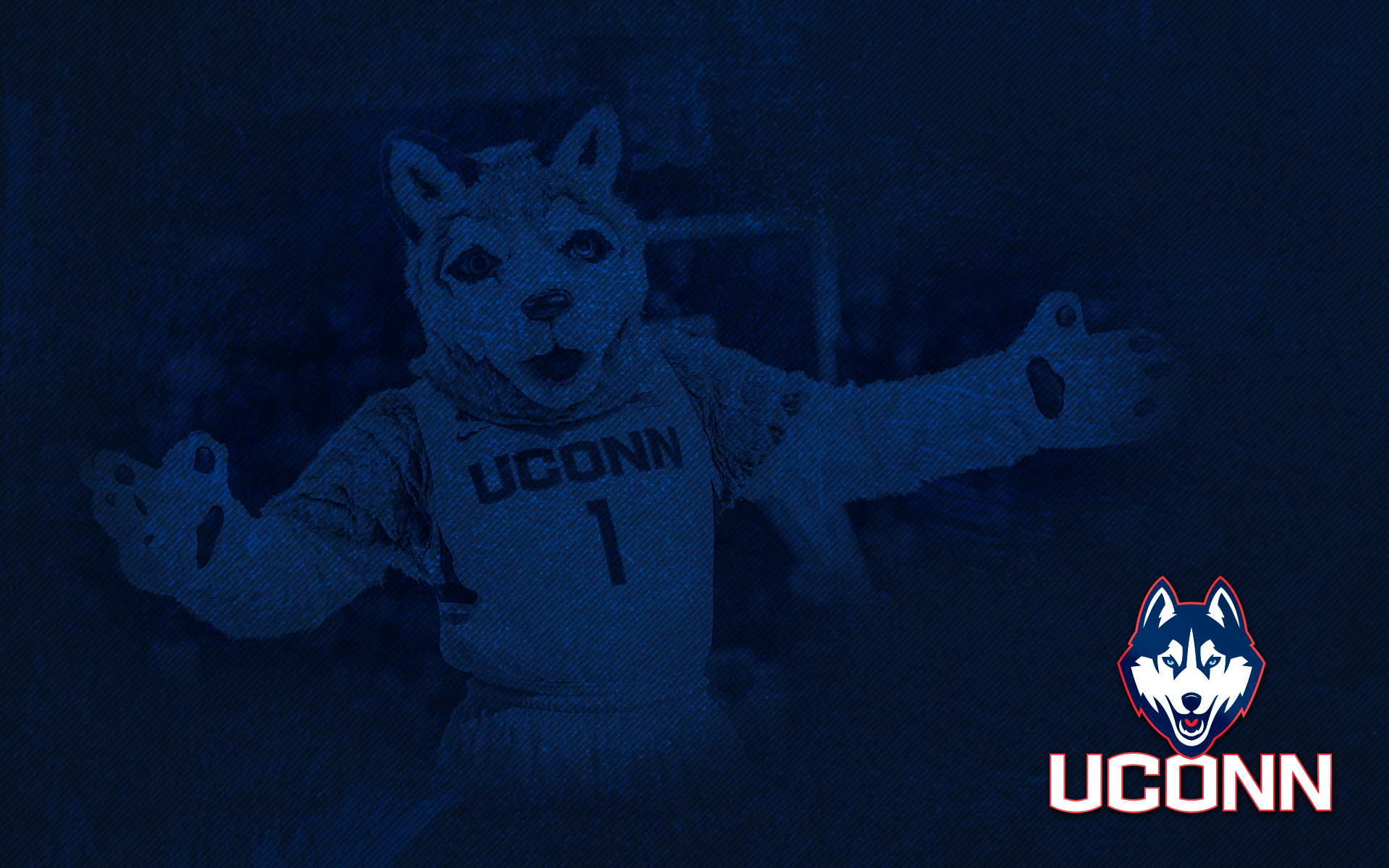 Uconn Huskies Basketball Wallpaper