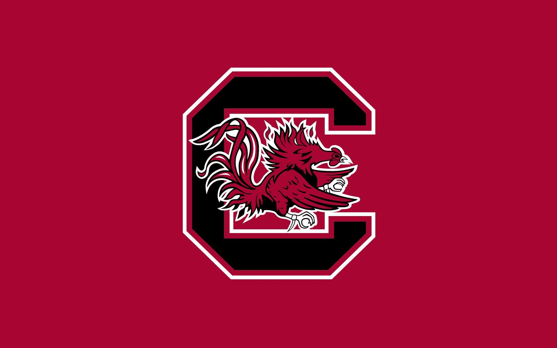 University Of South Carolina Wallpaper