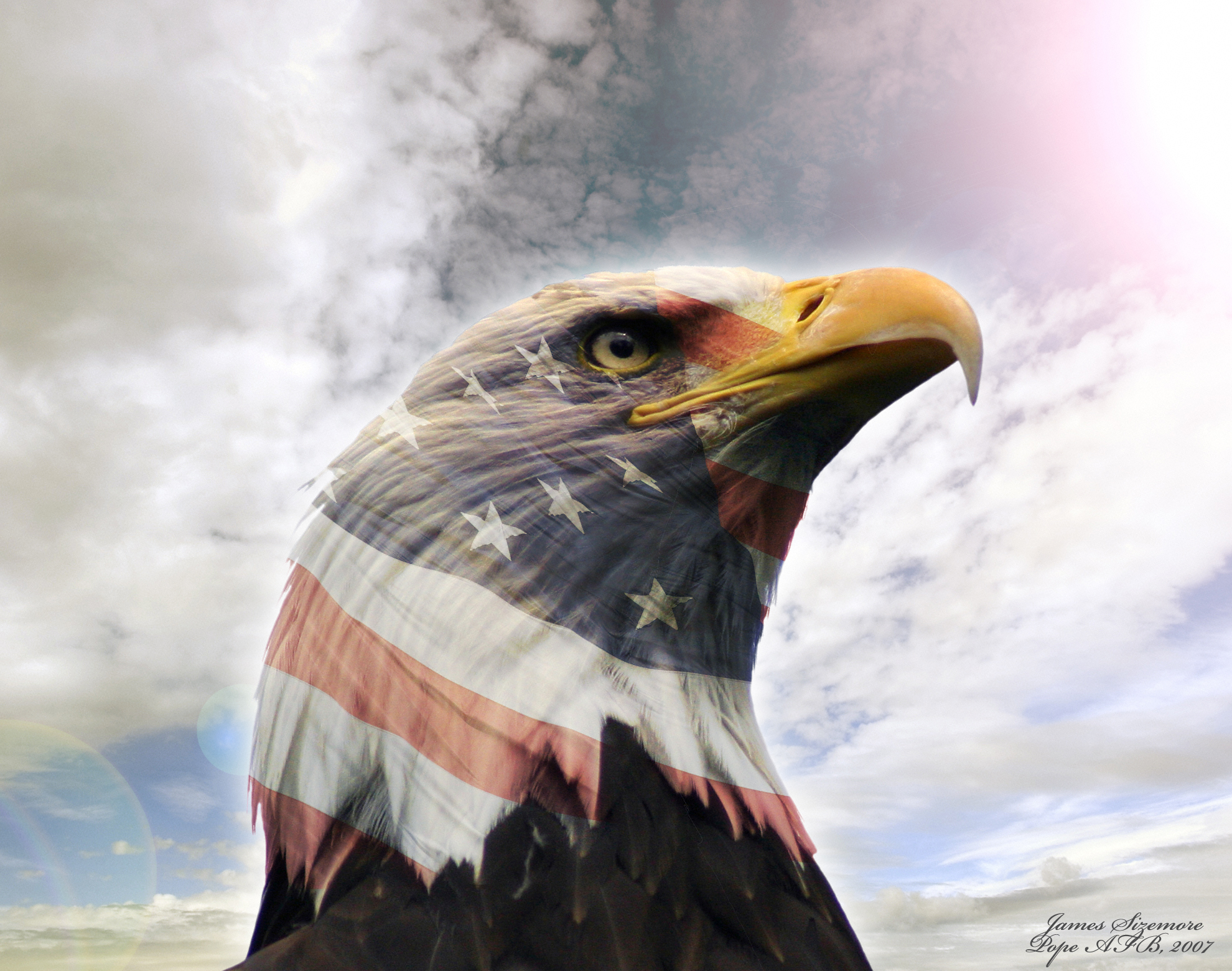 Download Usa Eagle Wallpaper Gallery