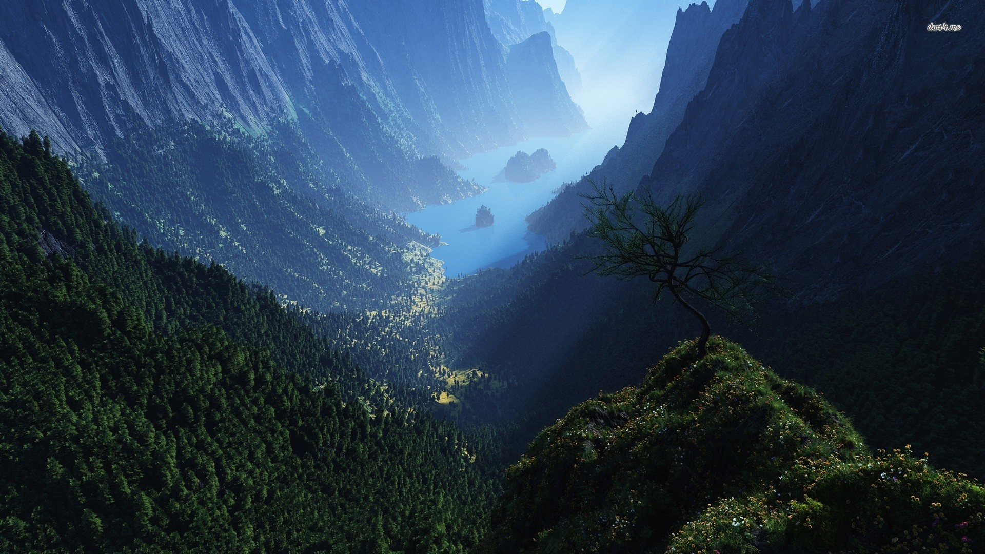 Valley Wallpapers