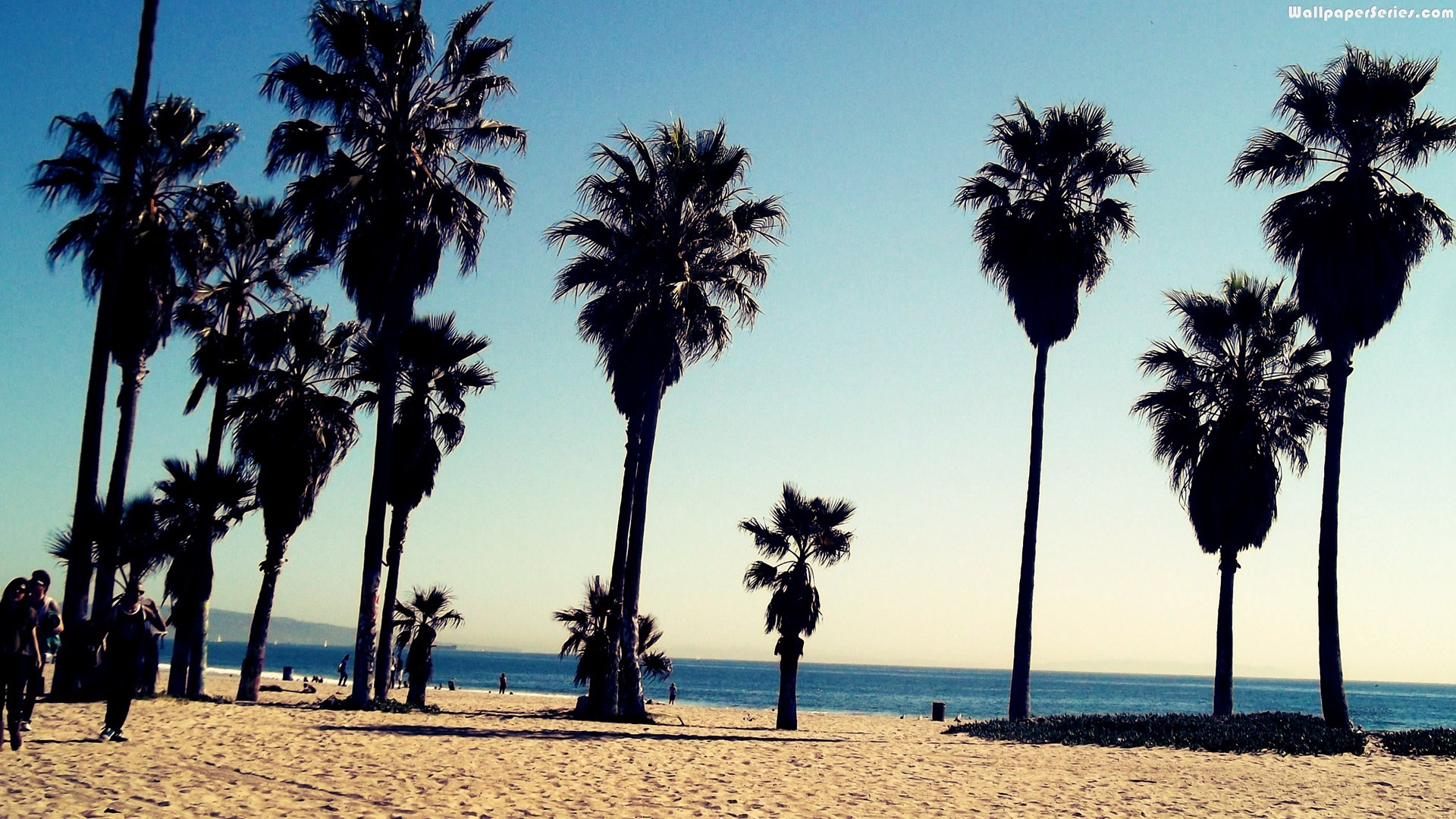 Venice Beach Wallpaper