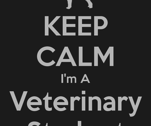 Veterinary Wallpaper