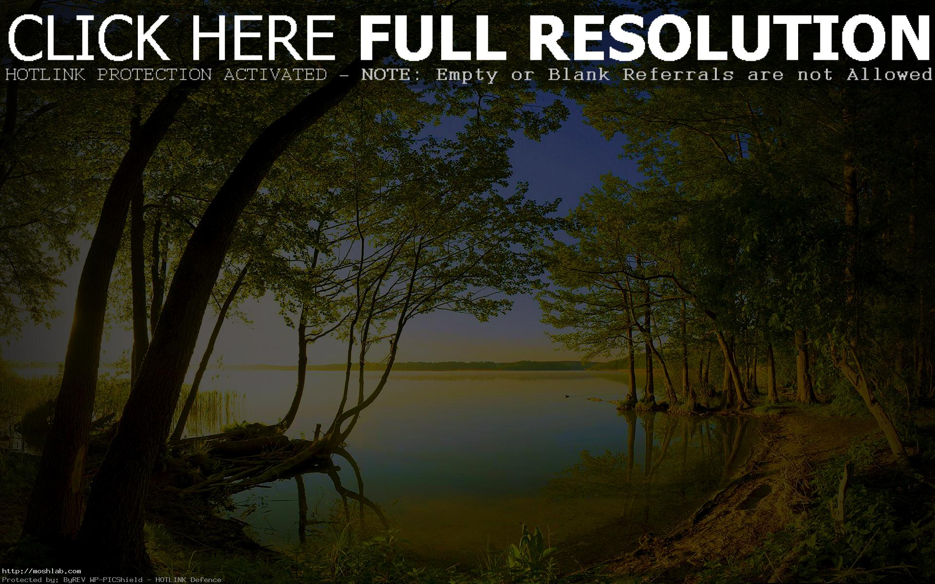 View Nature Wallpaper