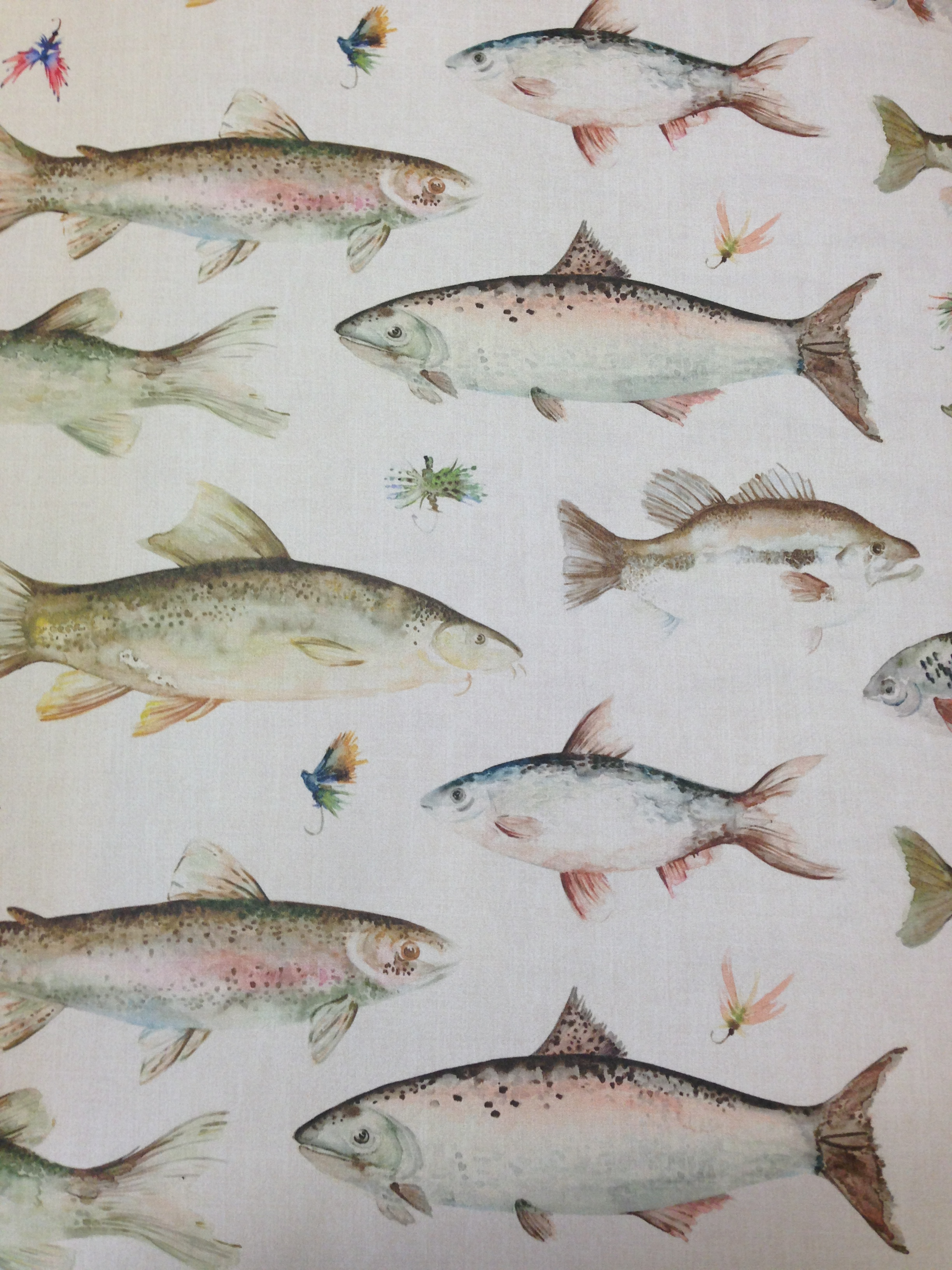 Download Vintage Fish Wallpaper Gallery