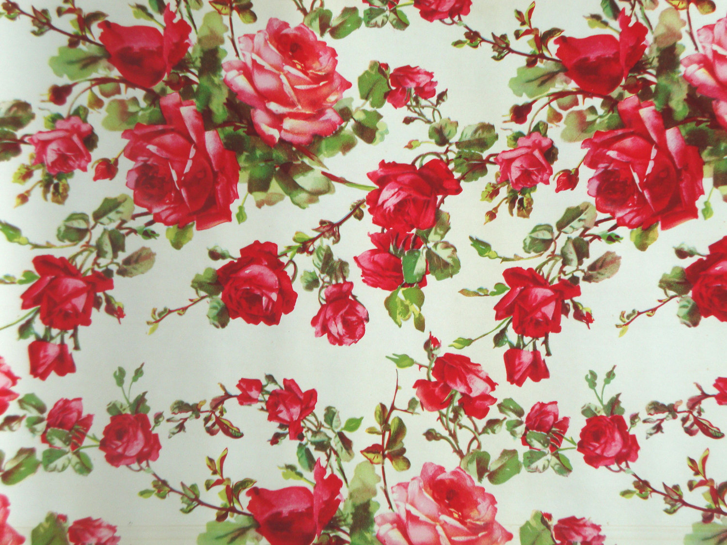 Vintage Red Rose Wallpaper