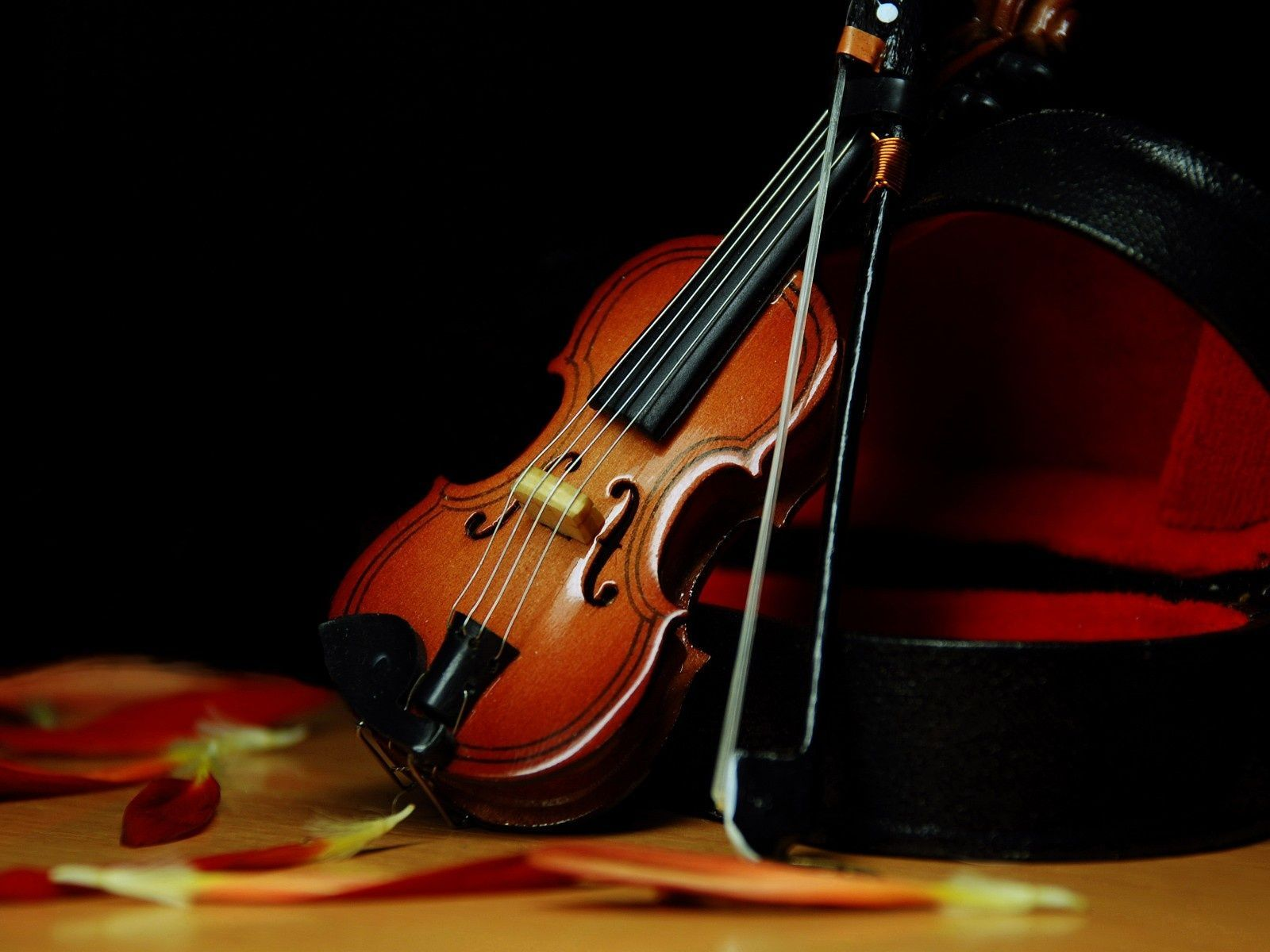Violin Wallpapers Free Download