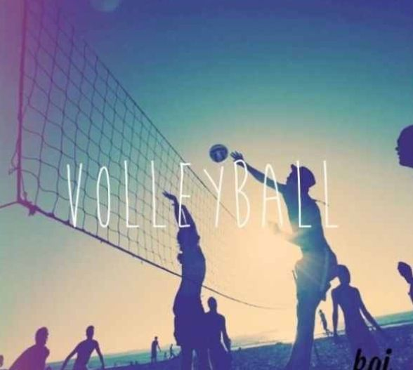 Volleyball Wallpapers For Your Phone