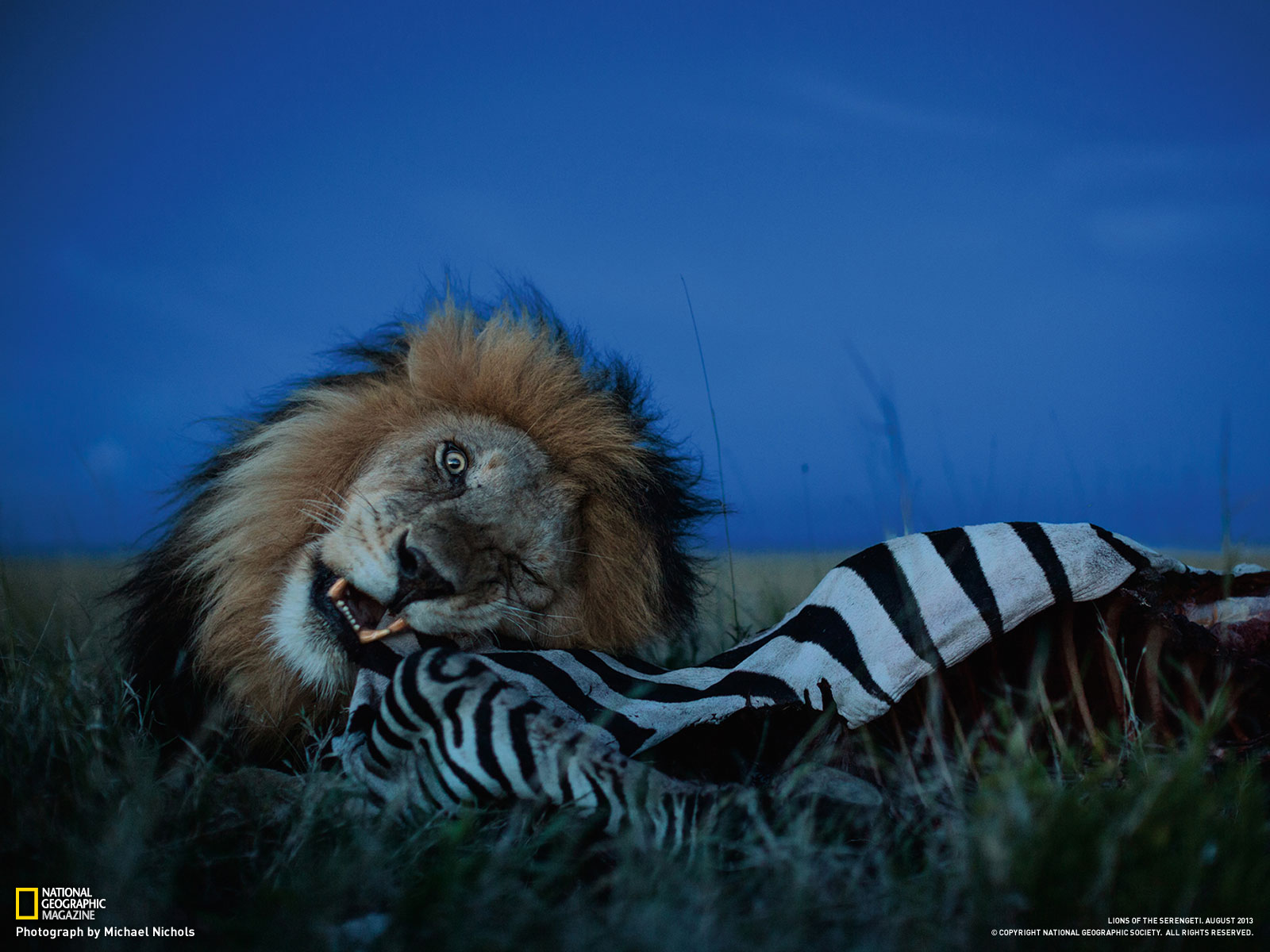 WWW Nationalgeographic Com Wallpapers