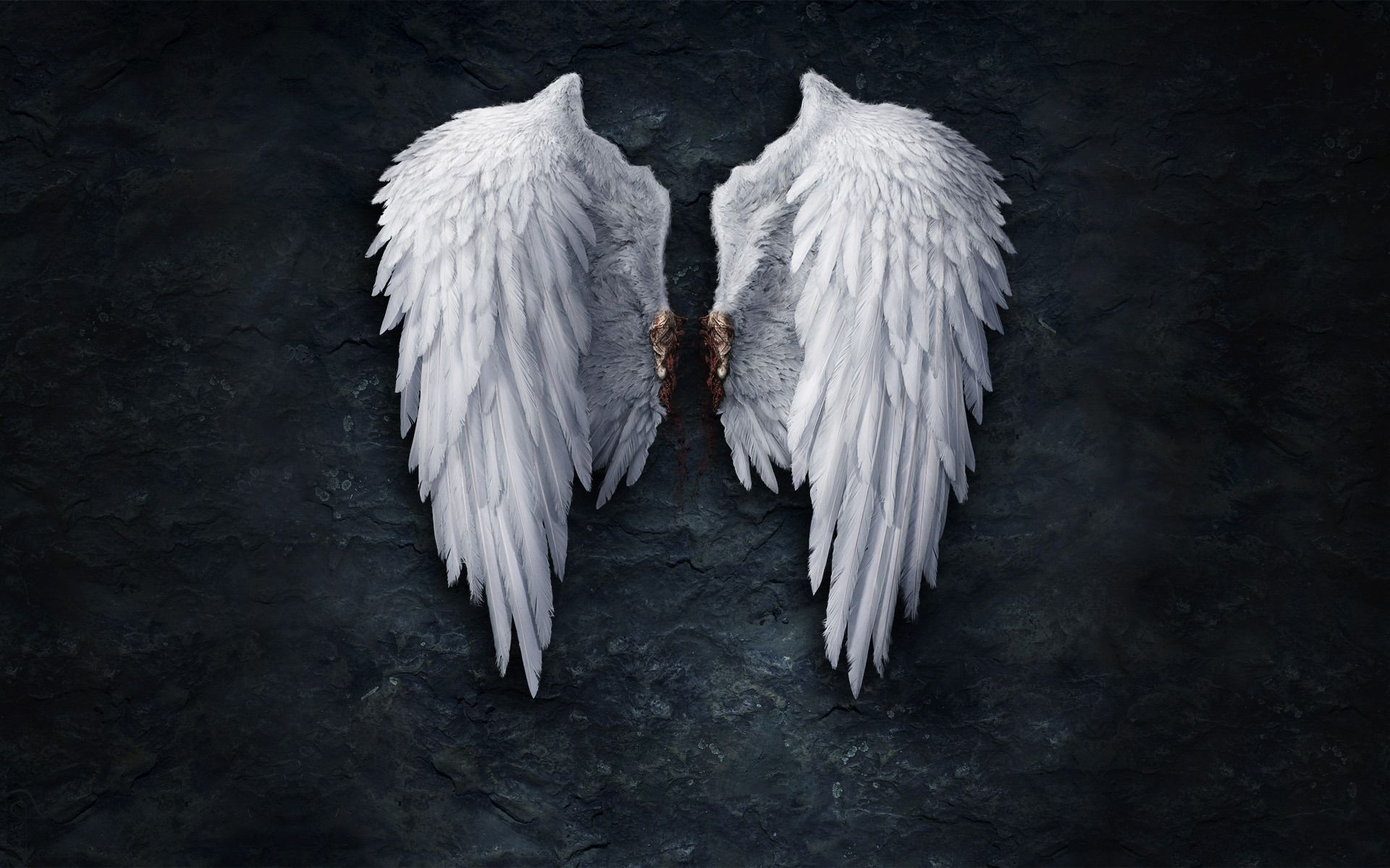 Wallpaper Angel Wings