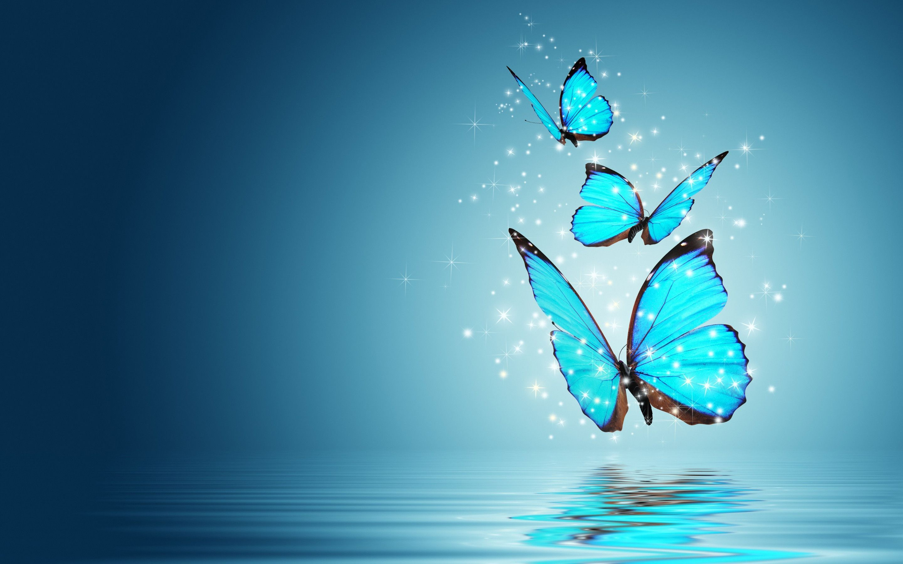 Wallpaper Blue Butterfly