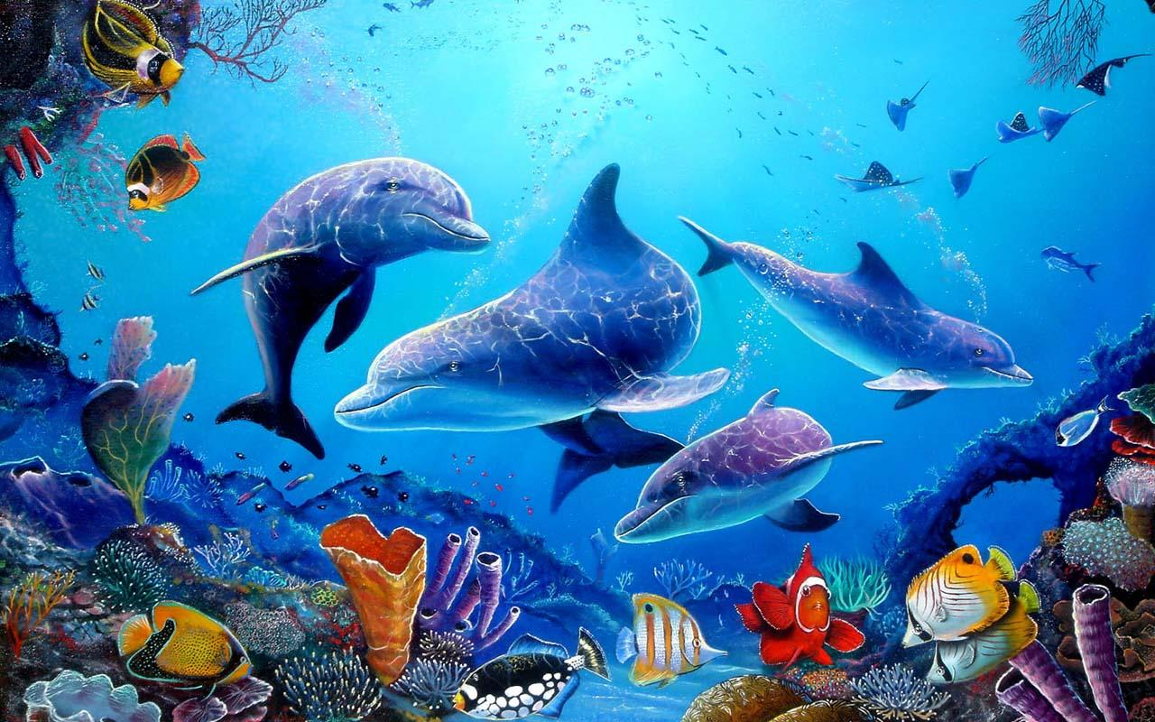 Download Wallpaper Gambar Ikan Kumpulan Wallpaper