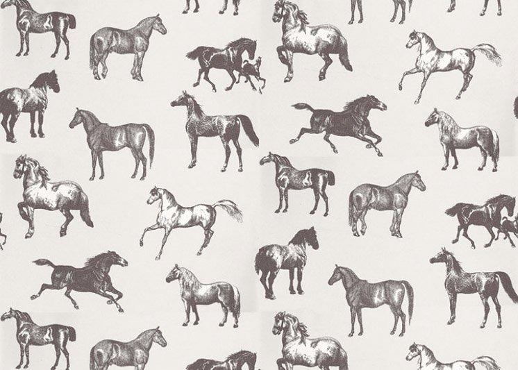 Wallpaper Horse Design