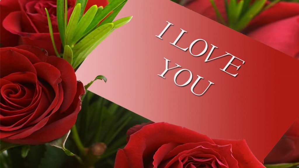 Wallpaper I Love You Free Download