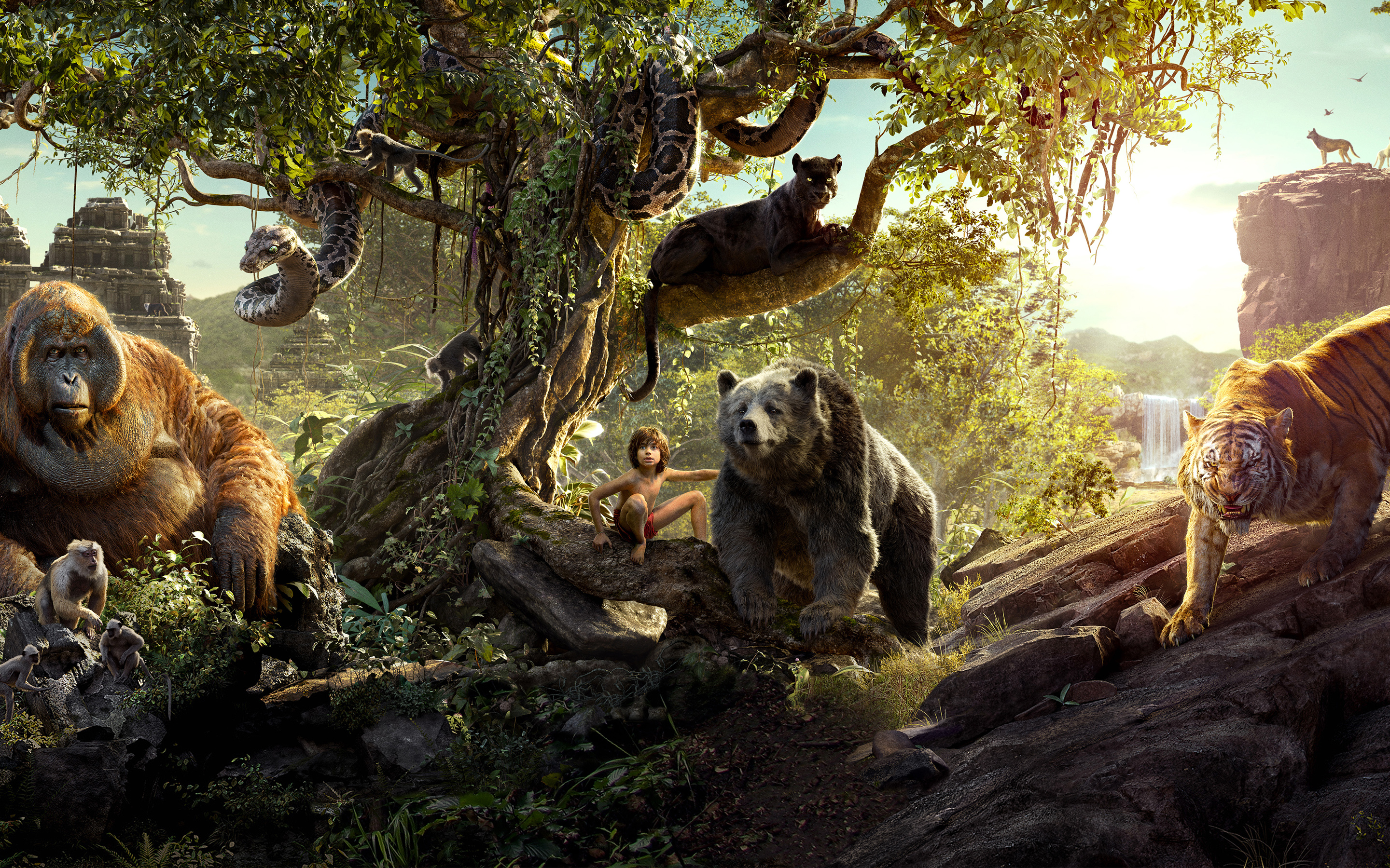 Wallpaper Jungle Book