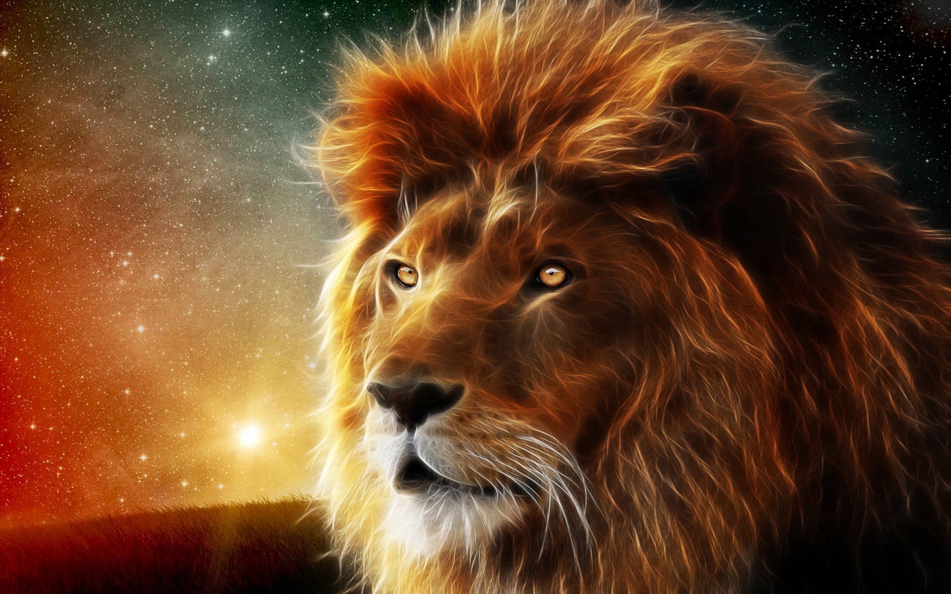 Wallpaper Lion