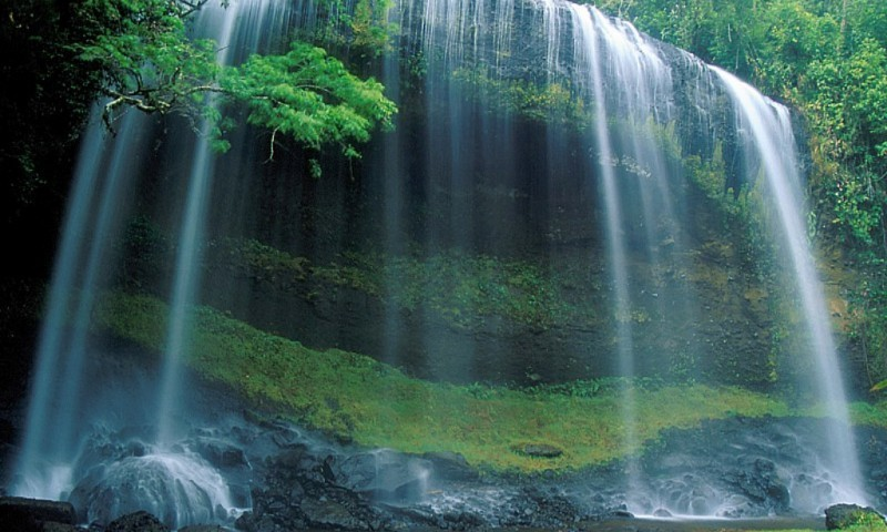 Wallpaper Live Waterfall